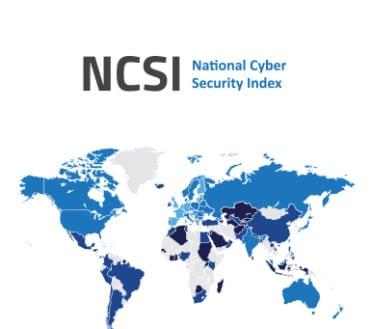 NCSI-publication